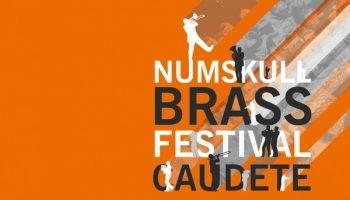El próximo 1 de abril se abre el periodo de inscripción para el IV Numskull Brass Festival Caudete