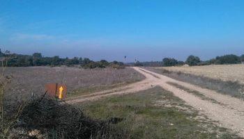 La Asociación de Amigos de los Caminos de Santiago del Sureste de Caudete ha reforzado la señalización entre Alatoz y Alcalá del Júcar