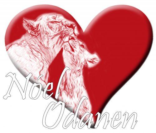 Cómo volverte más nuevo cada día – con Carmen   con NÓEL ODANEN, Caudete Digital - Noticias y actualidad de Caudete (Albacete)