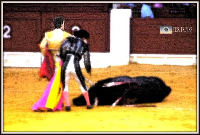 toro astillado y dos toreros en la arena