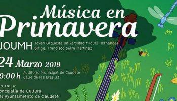 El domingo tendrá lugar un concierto a cargo de la Joven Orquesta de la Universidad 'Miguel Hernández' de Elche