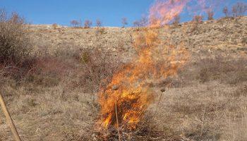 Queda prohibida la quema de restos vegetales hasta finales de septiembre