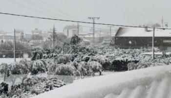 Caudete solicita más de 174.000 euros por los daños del temporal de nieve de enero de 2020