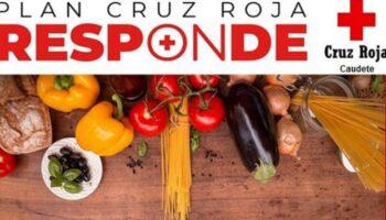 Cruz Roja Caudete organiza un curso de Manipulador de Alimentos