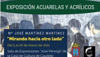 Hoy se inaugura la exposición de María José Martínez 'Mirando hacia otro lado'