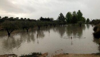 Casi 60 litros de lluvia han caído en Caudete desde el martes
