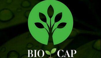 BIO CAP, una iniciativa que surge para limpiar el entorno natural de Caudete