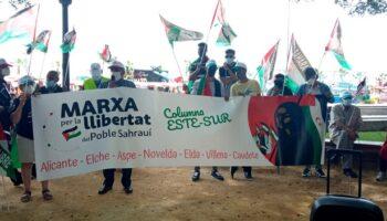 La 'Marcha por la Libertad' en apoyo al pueblo saharaui llegará el domingo a Caudete