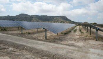 Al menos cuatro plantas fotovoltaicas ocuparán terrenos del término de Caudete